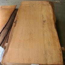 Kauri-Planke_028