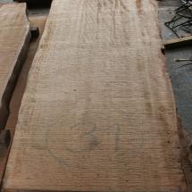 Kauri-Planke_031