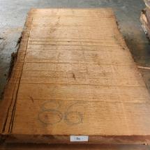 Kauri-Planke_086