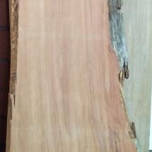 Kauri-Planke_029-angeschliffen